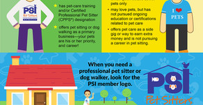 Choosing The Best Dog Walker/Pet Sitter For Your Pet