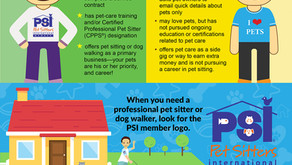 Choosing The Best Dog Walker/Pet Sitter For Your Pet