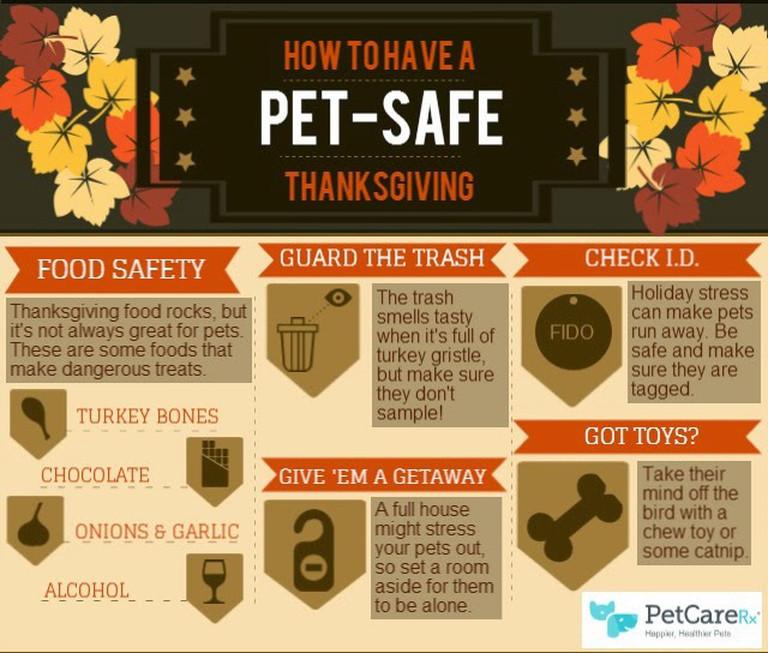 Thanksgiving Pet Safety | Prrs & Grrrs Dog Walking & Pet Sitting | Sunland - Tujunga