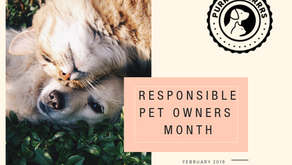 How To Be A Responsible Pet Owner in Sunland-Tujunga and the Foothills Area