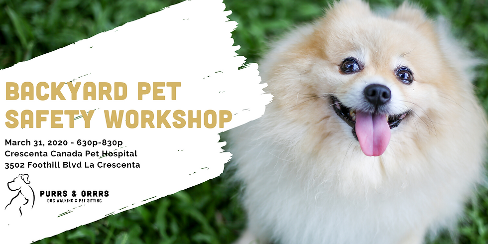 Backyard Pet Safety Workshop