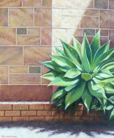 sandstone & agava 2.jpg