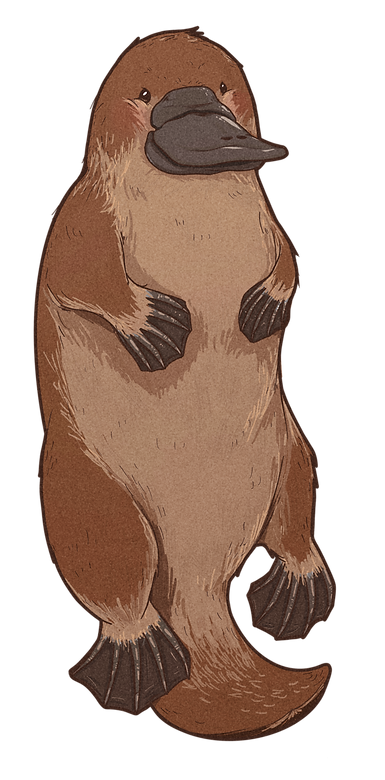 platypus11.png