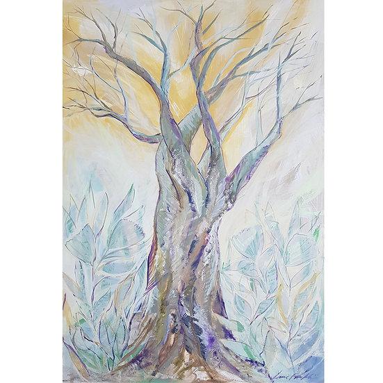 Baobab at Dusk