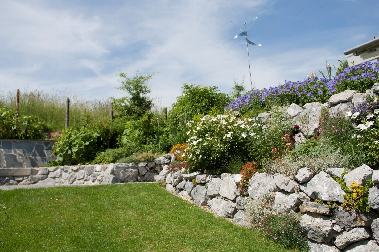 Blütenpracht und gepflegter Rasen
