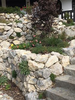 bepflanzte Alpenkalkmauer
