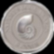 Nautilus Book Award Silver.transparent b