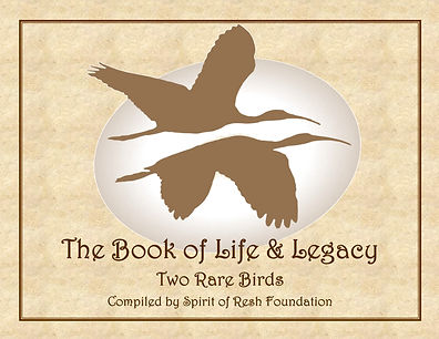 Book of Life and Legacy.cover.Volume Two