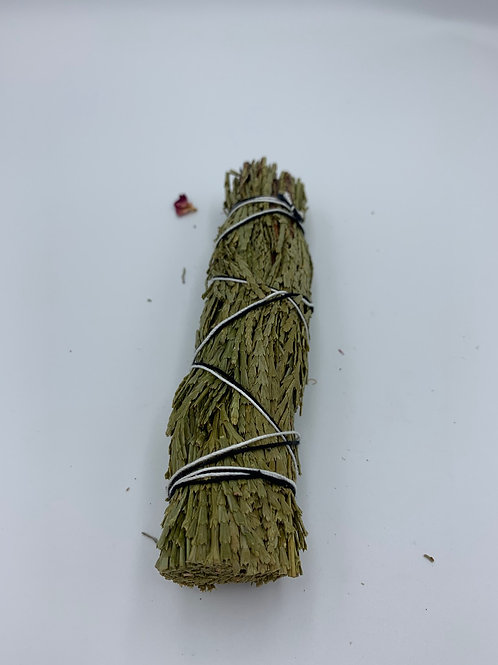 Cedar Sage