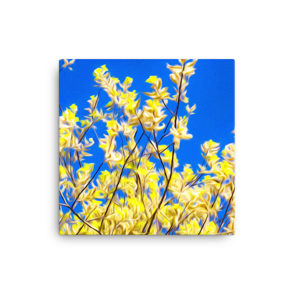 canvas-(in)-12x12-5fd3111070cc0
