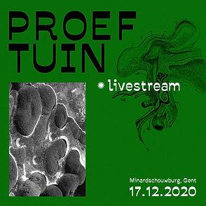 proeftuin_insta_livestream1_edited.jpg