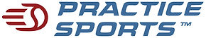 Copy of pslogo.jpg