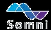 Somni logo.png