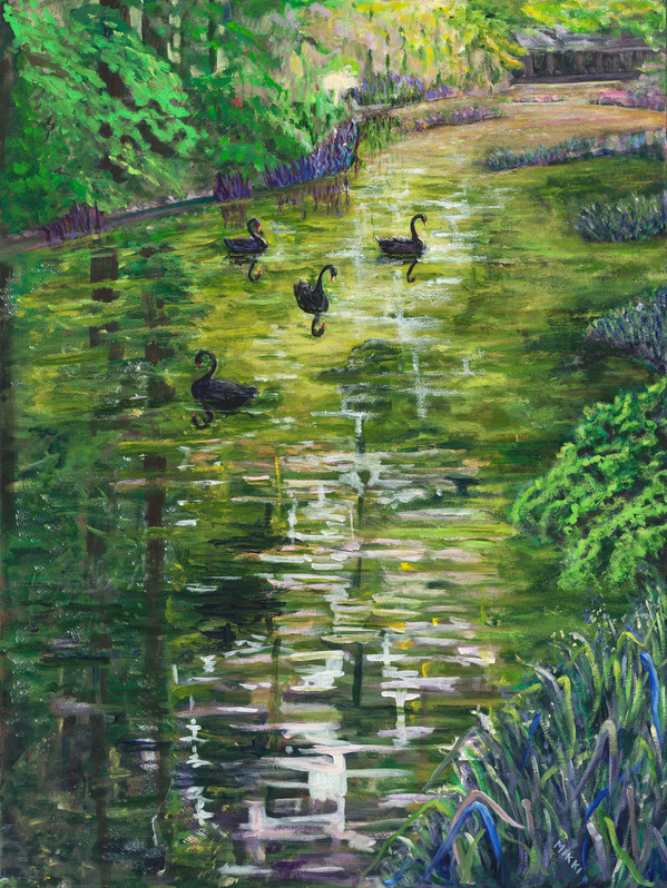 Black-Swans.jpg