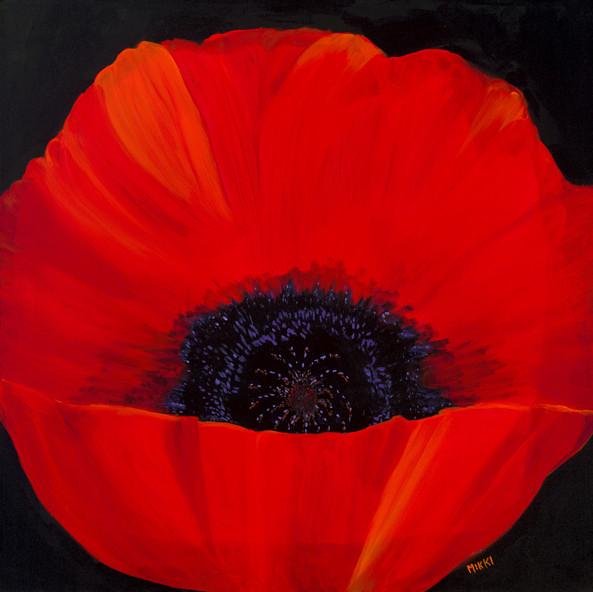 Red-Poppy.jpg