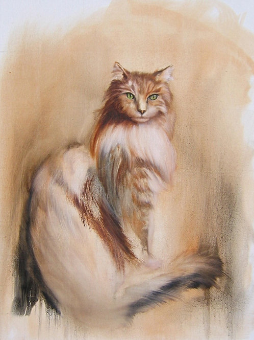 Emerald Eyed Maine Coon
