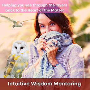 Intuitive-Wisdom-Mentoring.png