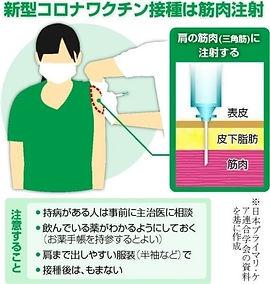 コロナ予防接種三角筋.jpg