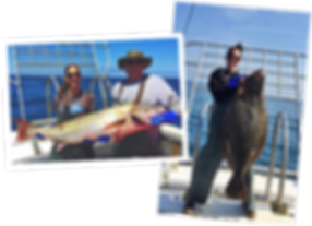 Local Catch - Global_Jordyn_Kastlunger.p