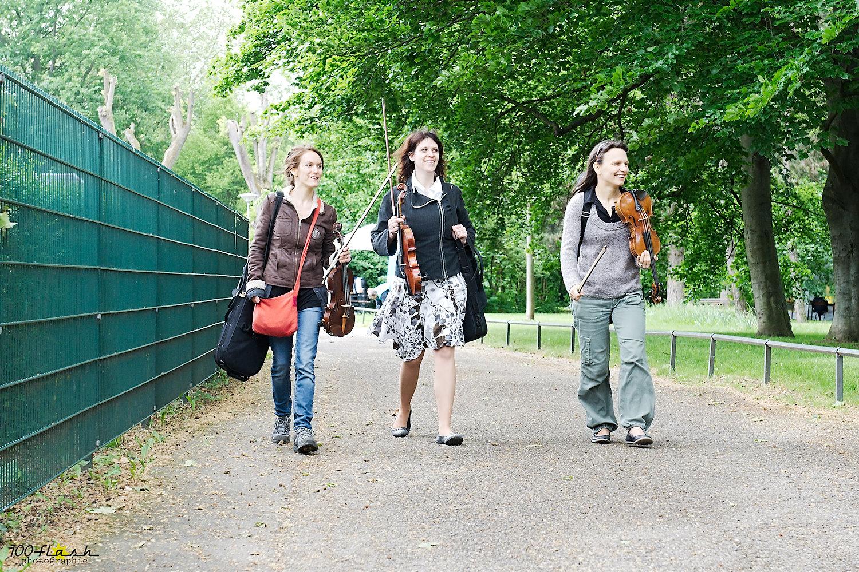 Faîtes du Parc - Strasbourg - 2012