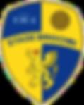 Stade_Briochin_logo.png