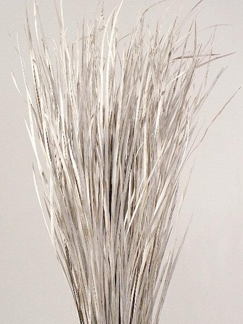White wild grass