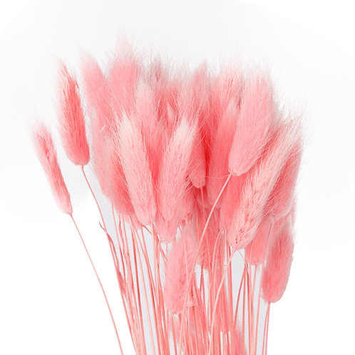 Pink bunny tails