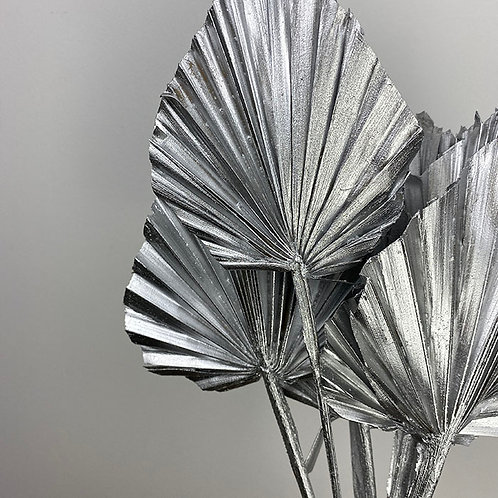Silver palm spear