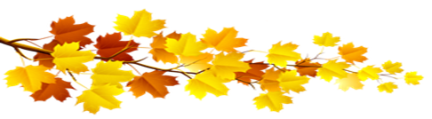leaves 2.png