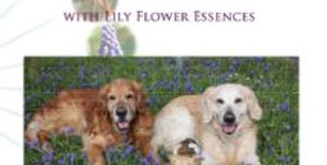 Healing Animals with  Lily Flower Essences