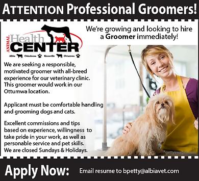 Groomer_recruitment ad_Southside_Rev-01.