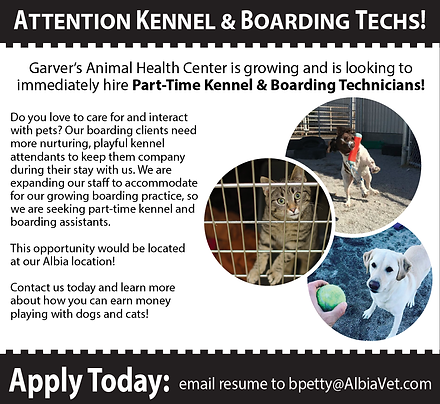 KennelTech_recruitment ad-01.png