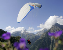 Parapente les 2 Alpes  Pascal Boulgakow (33) (1).jpg