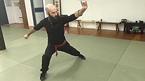 École de Kung Fu Longueuil Saint-Hubert Brossard