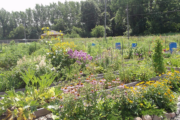 Jardin Communautaire de Chambly Carignan Richelieu