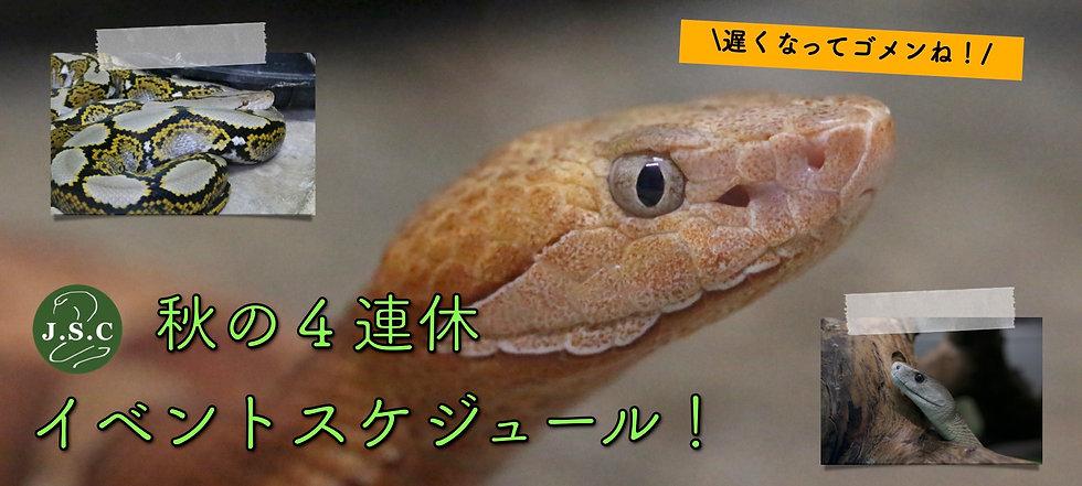 連休TOP(9月)J.jpg