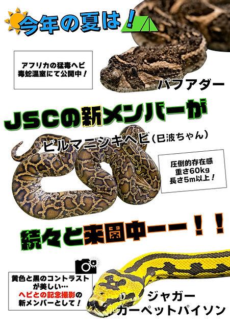 四連休入り口チラシJ.jpg