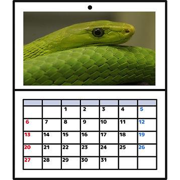 カレンダー合成.JPG