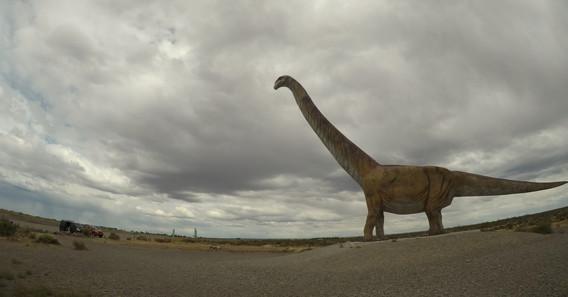 a dinosaura jsme taky viděli