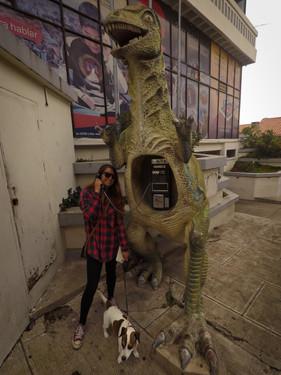 Sucerský dinosaur