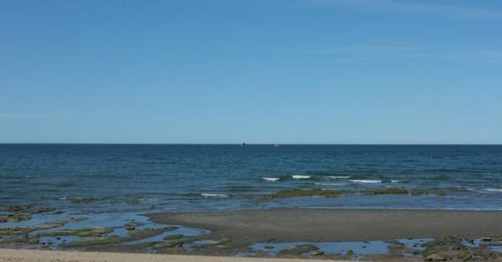 velrybička se předvádí...bohužel byla daleko, tak vypadá jak malej pstroužek:D