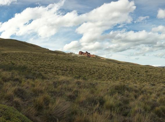 NP Patagonia