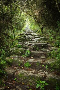Schody a zase schody