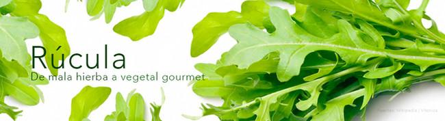 La rúcula. De mala hierba a vegetal gourmet