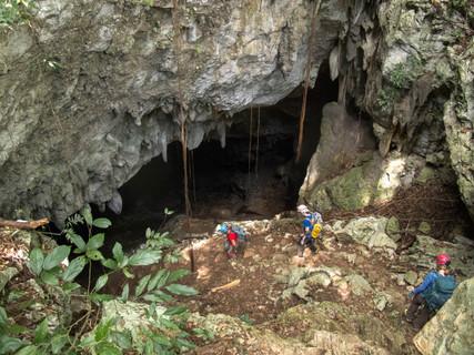 mountain-cow-crystal-cave_32457051344_o.jpg