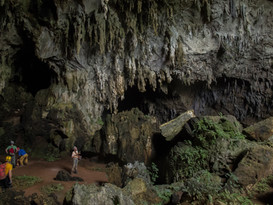 haunted-forest-cave_32457116444_o.jpg