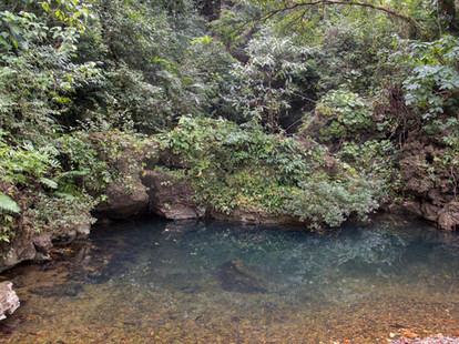 haunted-forest-cave_32912105850_o.jpg