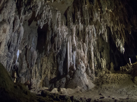 haunted-forest-cave_33300089685_o.jpg