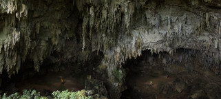 haunted-forest-cave_33144618782_o.jpg