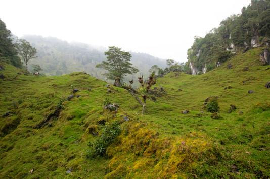 El Penon Karst terrain.